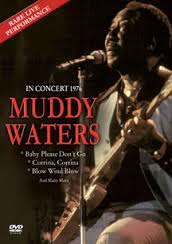 WATERS MUDDY - IN CONCERT 1976